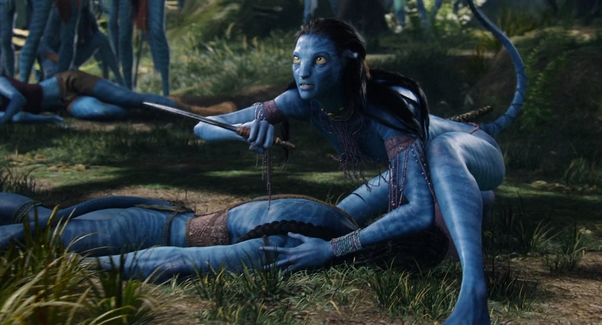Image D Avatar avatar (2009) : le prophète blanc et ses sauvages | le cinéma est